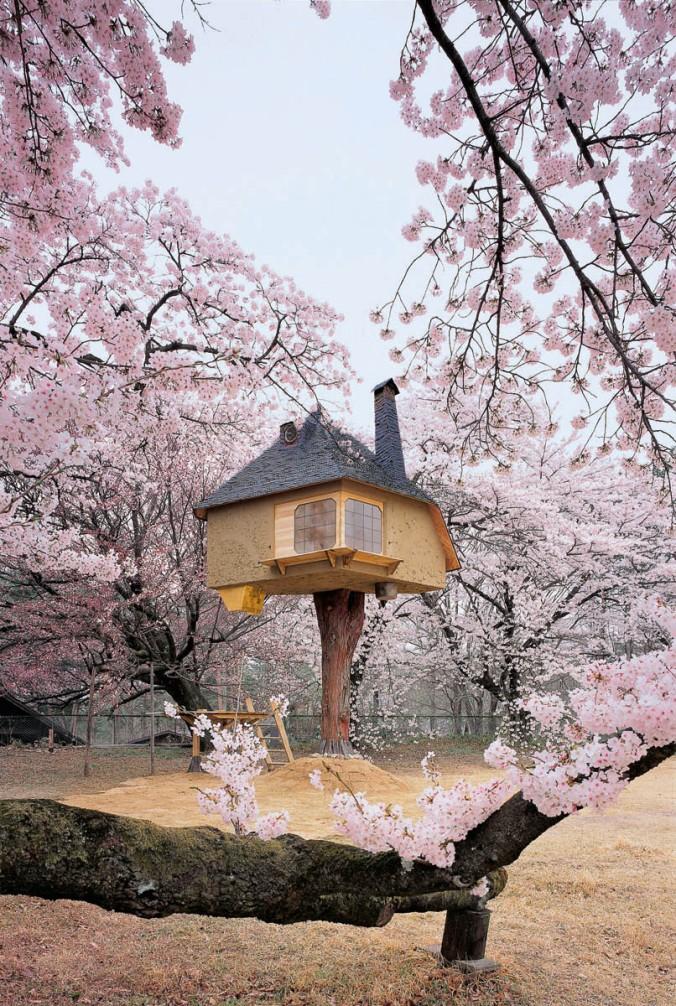 hiška na drevesu, hišica na drevesu, lesena hiška, arhitekt, naravna gradnja, gradnja z naravnimi materiali