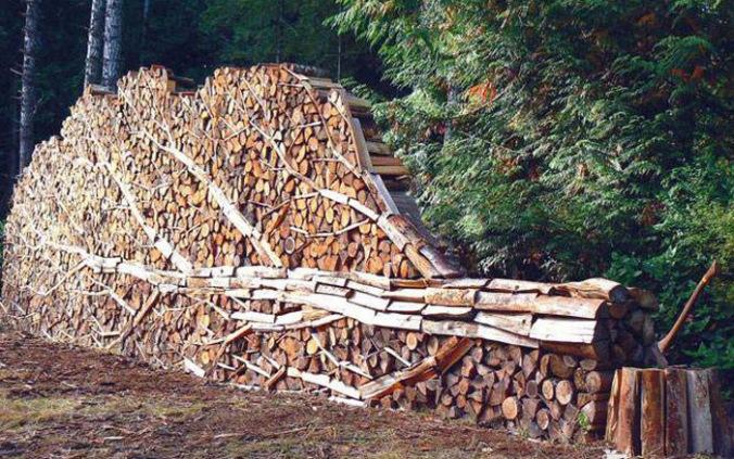 les, lesena bruna, naravni material, naravna gradnja, gradnja z naravnimi materiali