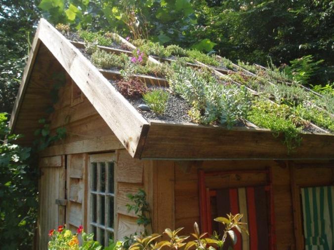 zelena streha, naravna hiša, naravna gradnja, lesena hiša