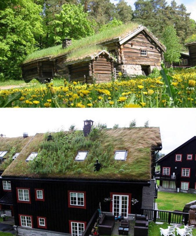 zelena streha, ozelenjena streha, naravna hiša, naravna gradnja, gradnja z naravnimi materiali, lesena hiša