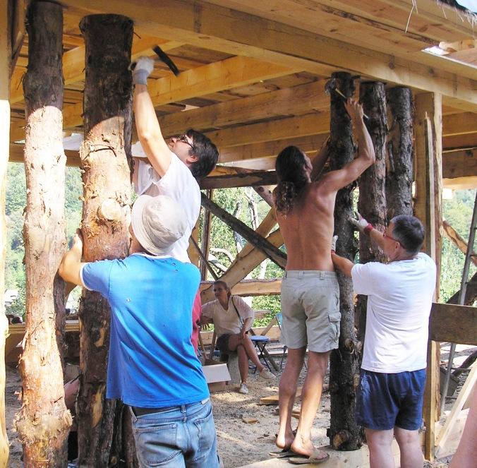 spodbijanca, hiša iz sena, naravna gradnja, gradnja z naravnimi materiali, naravna hiša, lesena debla
